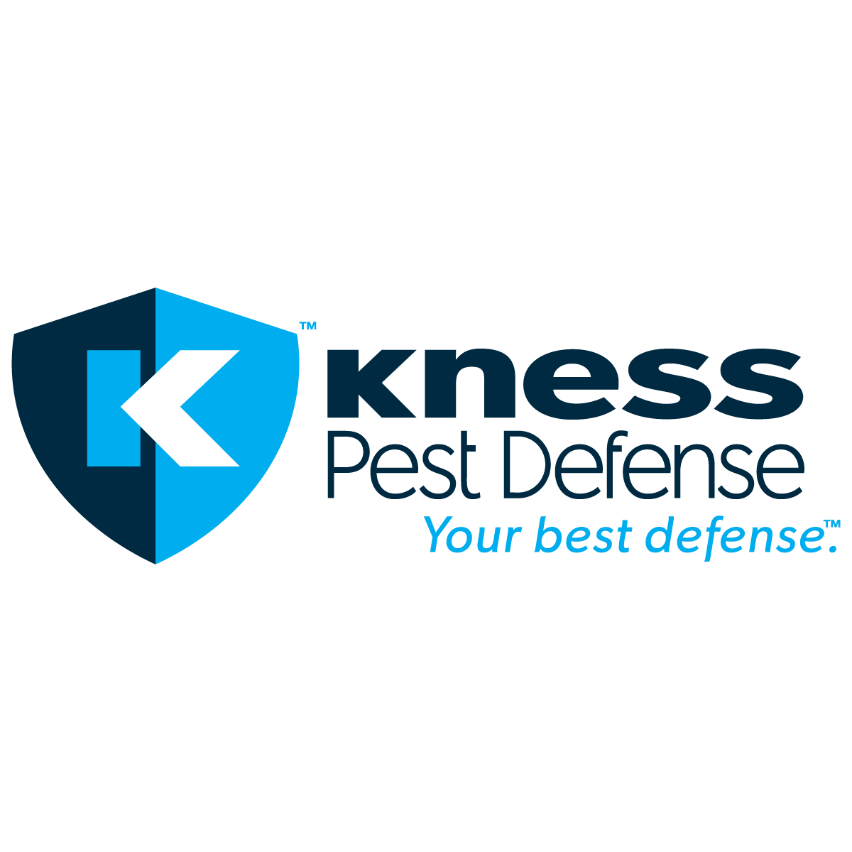 Image result for kness