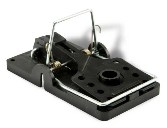 Big Snap-E® Rat Trap Products