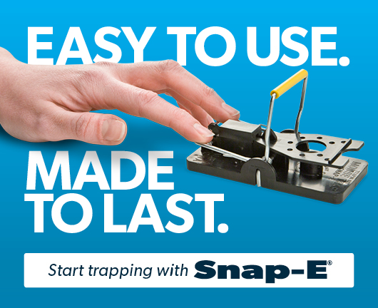 Snap-E Mousetrap